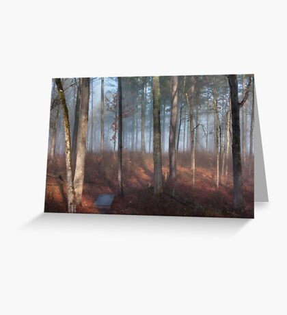 Foggy Forest, Jordan Lake, NC Greeting Card