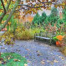 Autumn At Olbrich by wiscbackroadz