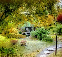Japanese Gardens  by naturelover