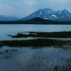 Dezdeash Lake by Yukondick