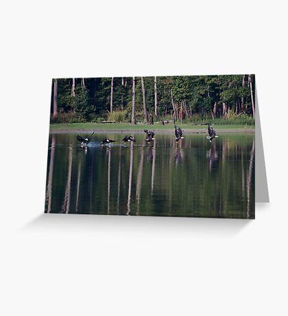 Catch Of The Day, Jordan Lake, NC Greeting Card