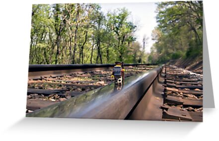 Down on the tracks by Dan Phelps