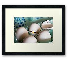 Hatched Framed Print