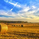 Halcyon Harvest Days by derekbeattie