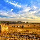 Halcyon Harvest Days by derekbeattie