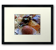 Home Made Goodies Framed Print