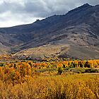 Autum on the Ranch by doubleheader
