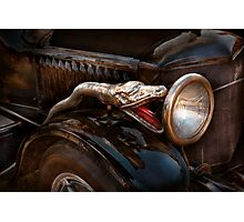 Car - Steamer - Snake Charmer  Photographic Print