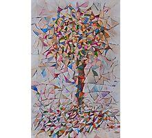 Faraway Tree Photographic Print