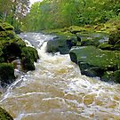 The Strid  by Colin J Williams Photography