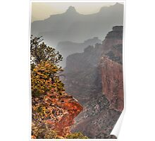 Misty canyon Poster