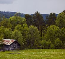 Shed From Bergensbanen, Norway 2012 by YorkStCreative