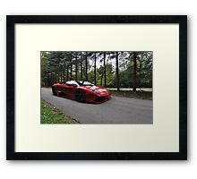 Out in the Woods Framed Print