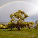 Rainbow Gum by Anthony Davey
