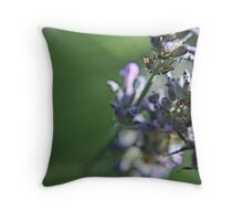 Bee on lavanda flower Throw Pillow