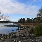 Neitsytsaaret (Virgin islands), Southern Finland, Oct 2012 by KanaShow