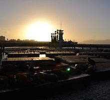 Pier 39 sunset by hitomimyhomie