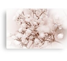 Grass Flower Canvas Print