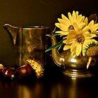 autumn  by anisja