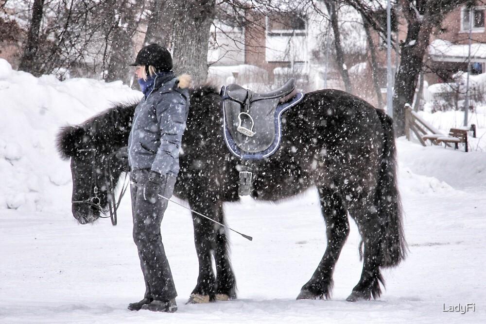 Snowy horse by LadyFi