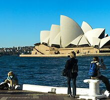 Sydney Opera House panorama by Fran Woods