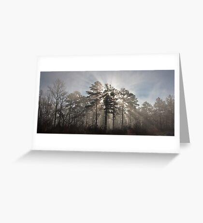 Sunburst, Jordan Lake, NC Greeting Card