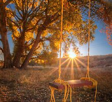 Sunset Swing by Bob Larson