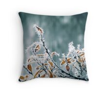 28.10.2012: Frost, Branches, Colours Throw Pillow