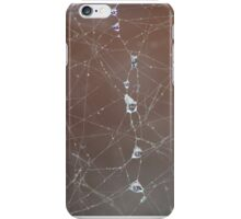 Cobweb iPhone Case/Skin