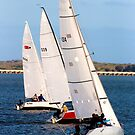 Goolwa Regatta Trio by Stuart Daddow Photography