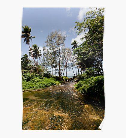 Stream flowing to seashore, Vanuatu, South Pacific Ocean Poster