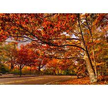 Fall Road,Chestnut Hill, Massachusetts Photographic Print