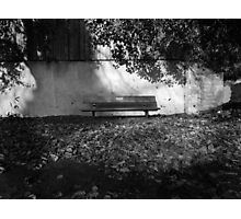 The bench among the leaves Photographic Print