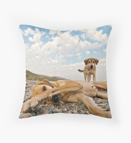 Playful Dogs On The Beach Throw Pillow