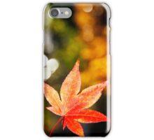 Autumn colors iPhone Case/Skin