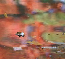 Autumn River by Lynn Wiles