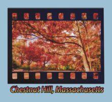 Fall Road,Chestnut Hill, Massachusetts Kids Clothes