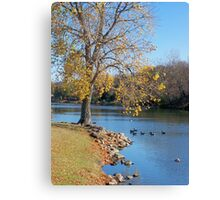 Tranquil Moment Canvas Print