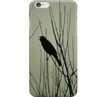 Songbird iPhone Case/Skin