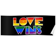 Love Wins Rainbow Gay Homosexual Lesbian Poster