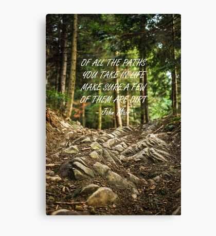 Of all the paths... Canvas Print