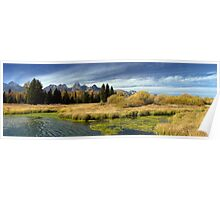 Golden Marsh Grasses, Teton Panorama Poster