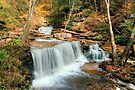 Falling Leaves at Delaware Falls by Gene Walls