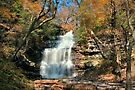 Ganoga Falls In the Bright Fall Sun by Gene Walls