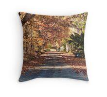 Country Autumn Road Throw Pillow