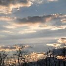 Beautiful Golden Winter Sunset by ack1128