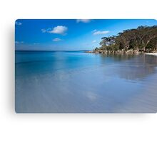 Green Patch Beach Canvas Print