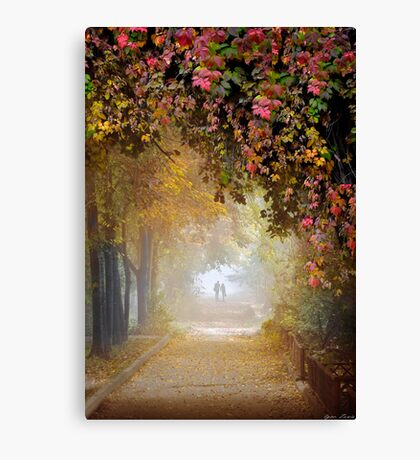 Stroll In The Fog Canvas Print