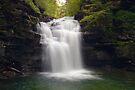 Big Falls by Gene Walls