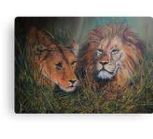 Disturbed siesta Canvas Print